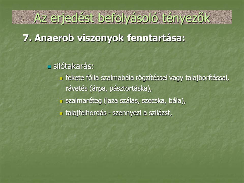 Az erjedést befolyásoló tényezők 7. Anaerob viszonyok fenntartása:  silótakarás:  fekete fólia szalmabála rögzítéssel vagy talajborítással, rávetés