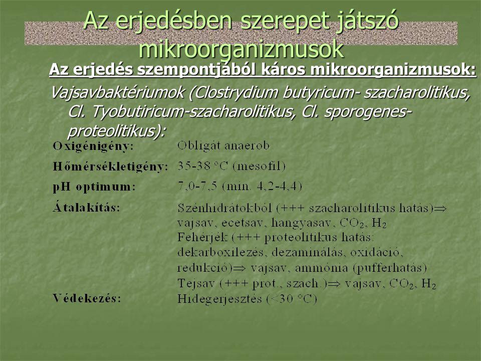 Az erjedésben szerepet játszó mikroorganizmusok Az erjedés szempontjából káros mikroorganizmusok: Vajsavbaktériumok (Clostrydium butyricum- szacharoli
