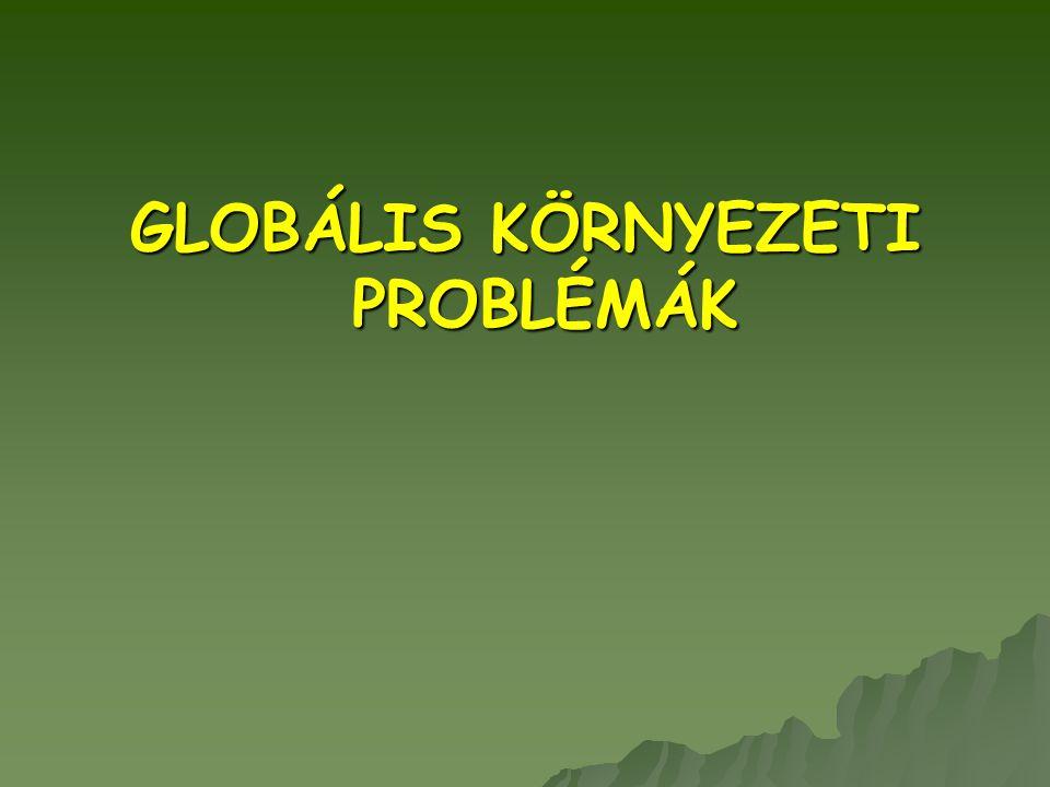 GLOBÁLIS PROBLÉMÁK 1.Népességrobbanás 2. Biológiai sokféleség csökkenése 3.