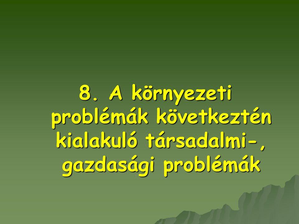 8. A környezeti problémák következtén kialakuló társadalmi-, gazdasági problémák