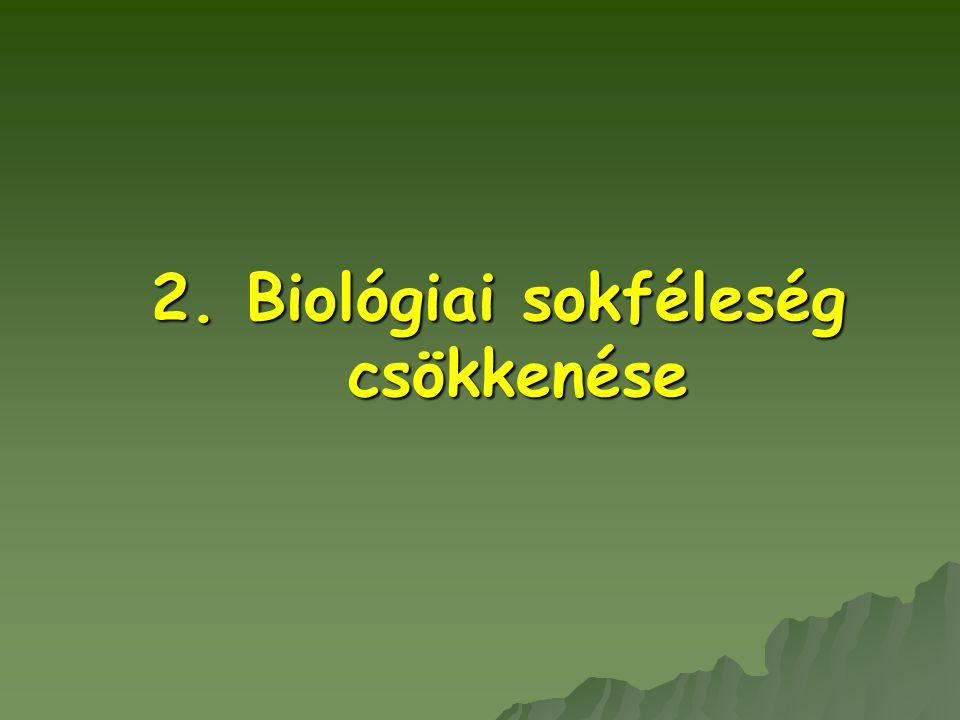 5. Víz-, levegő-, talajszennyezés