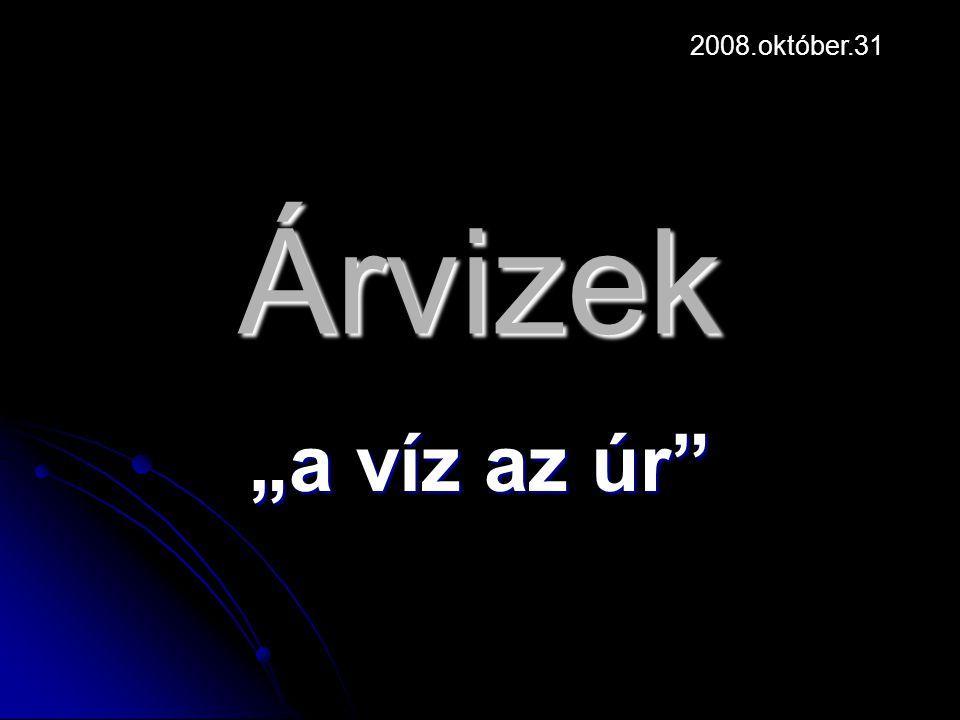 """Árvizek """"a víz az úr 2008.október.31"""
