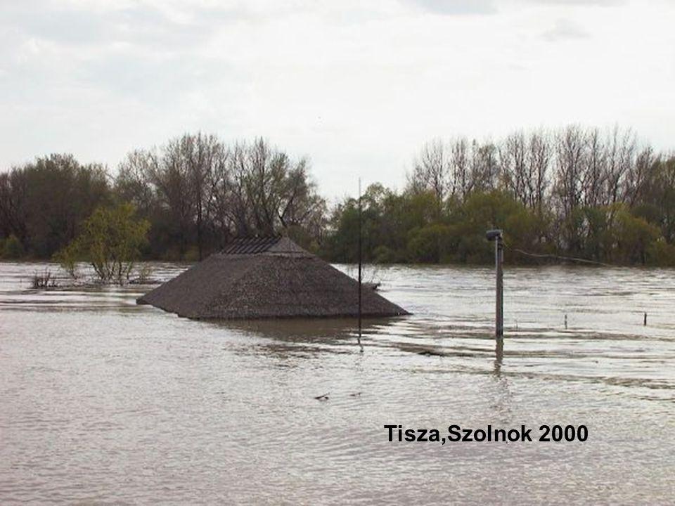  Az árvízi katasztrófa bizonyos méretig előre jelezhető, hisz az állandó figyelőszolgálat folyamatosan ellenőrzi a víz emelkedését.