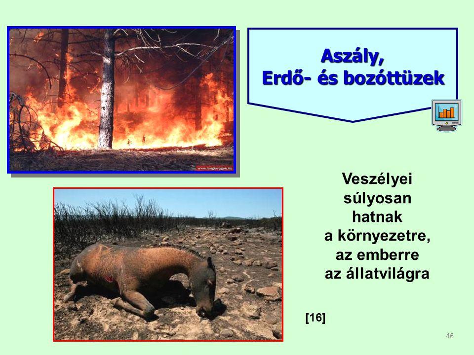 46 Aszály, Erdő- és bozóttüzek [16] Veszélyei súlyosan hatnak a környezetre, az emberre az állatvilágra
