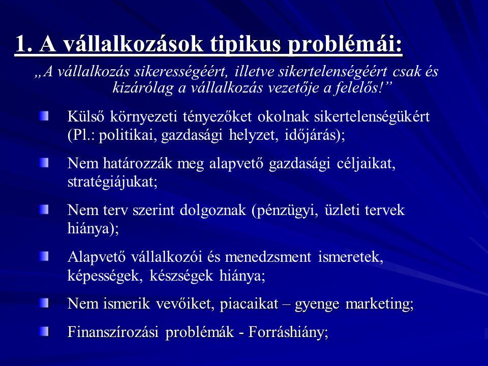 """1. A vállalkozások tipikus problémái: """"A vállalkozás sikerességéért, illetve sikertelenségéért csak és kizárólag a vállalkozás vezetője a felelős!"""" Kü"""