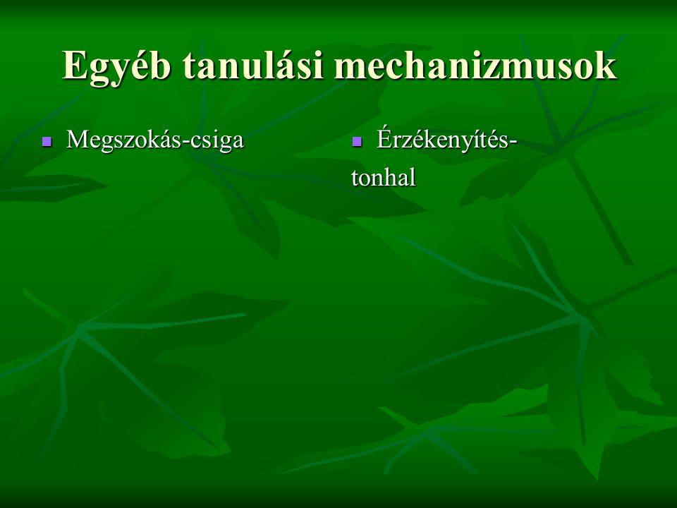 Egyéb tanulási mechanizmusok  Megszokás-csiga  Érzékenyítés- tonhal