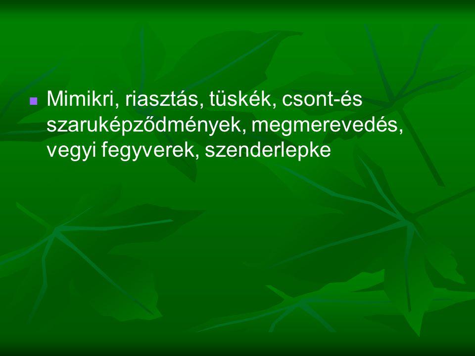   Mimikri, riasztás, tüskék, csont-és szaruképződmények, megmerevedés, vegyi fegyverek, szenderlepke