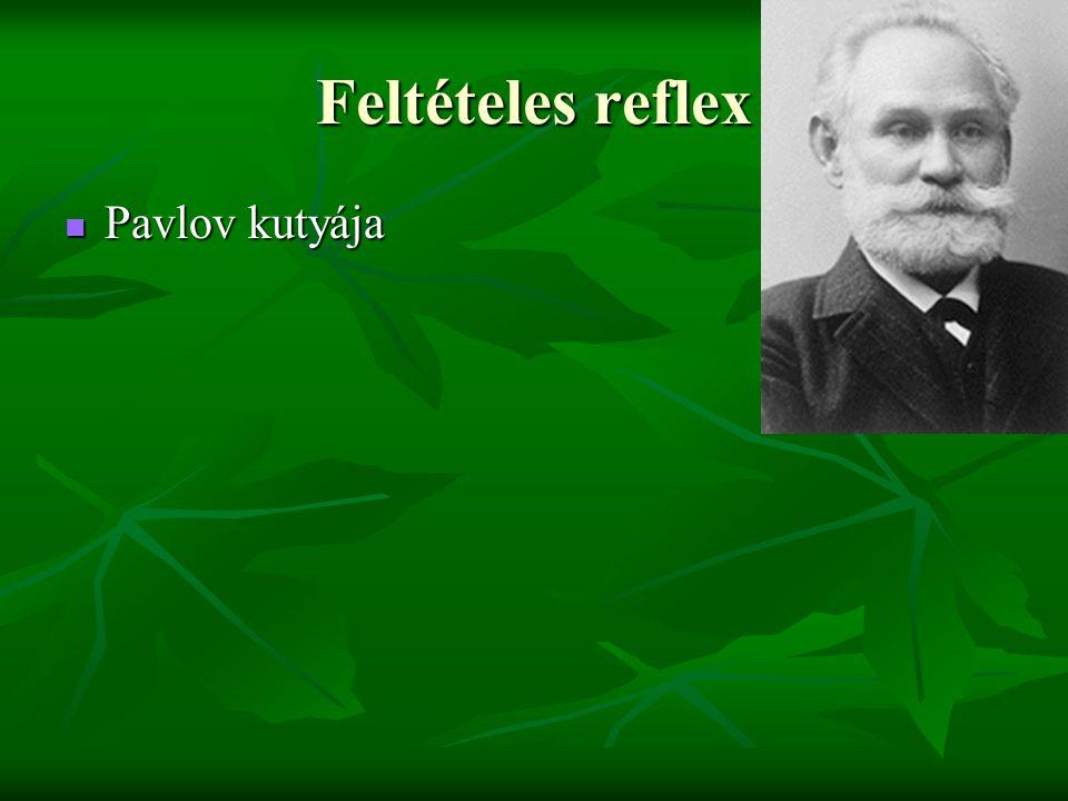 Feltételes reflex  Pavlov kutyája