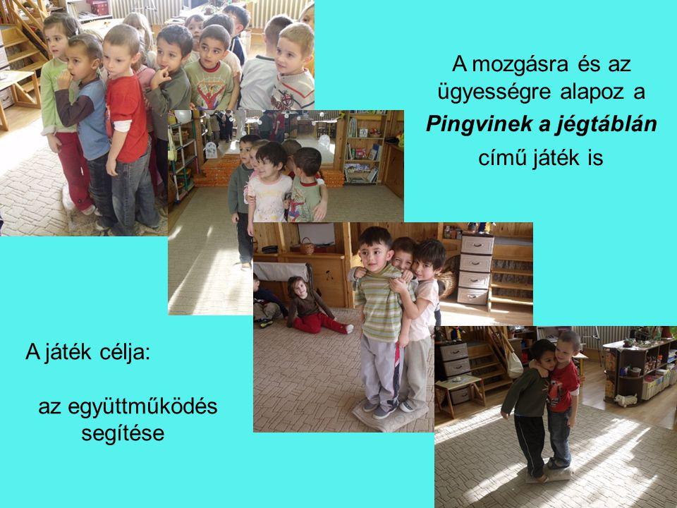 A mozgásra és az ügyességre alapoz a Pingvinek a jégtáblán című játék is A játék célja: az együttműködés segítése