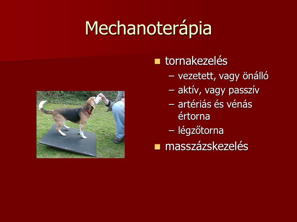 Mechanoterápia  tornakezelés –vezetett, vagy önálló –aktív, vagy passzív –artériás és vénás értorna –légzőtorna  masszázskezelés