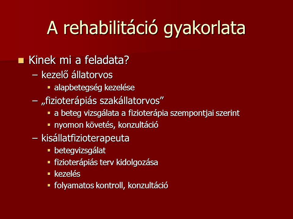 """A rehabilitáció gyakorlata  Kinek mi a feladata? –kezelő állatorvos  alapbetegség kezelése –""""fizioterápiás szakállatorvos""""  a beteg vizsgálata a fi"""