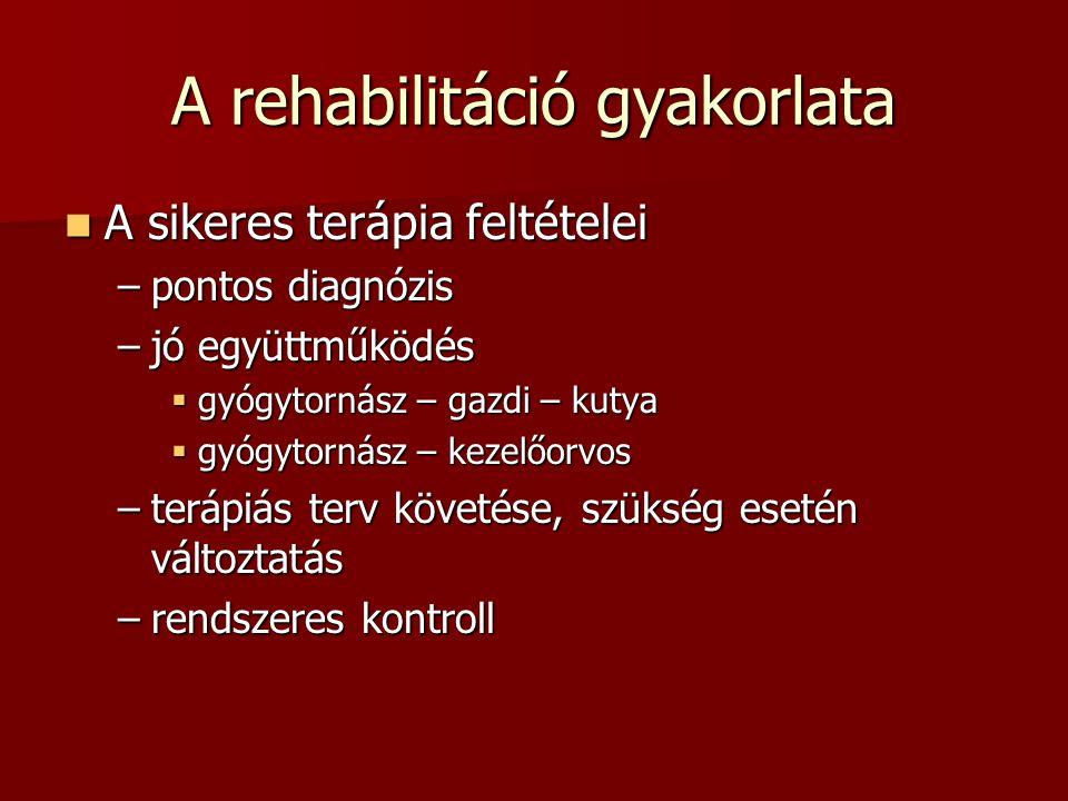 A rehabilitáció gyakorlata  A sikeres terápia feltételei –pontos diagnózis –jó együttműködés  gyógytornász – gazdi – kutya  gyógytornász – kezelőor