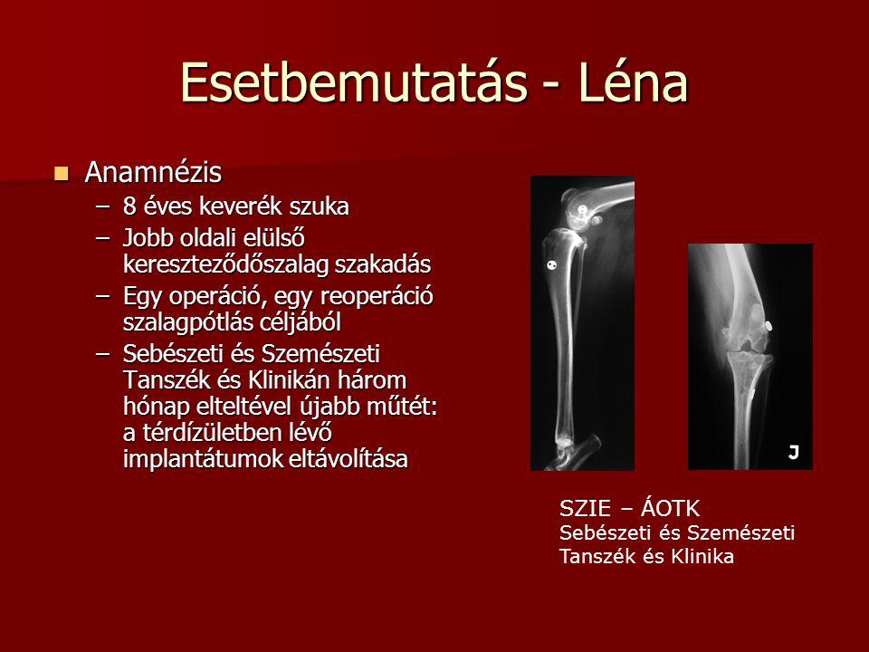 Esetbemutatás - Léna  Anamnézis –8 éves keverék szuka –Jobb oldali elülső kereszteződőszalag szakadás –Egy operáció, egy reoperáció szalagpótlás célj