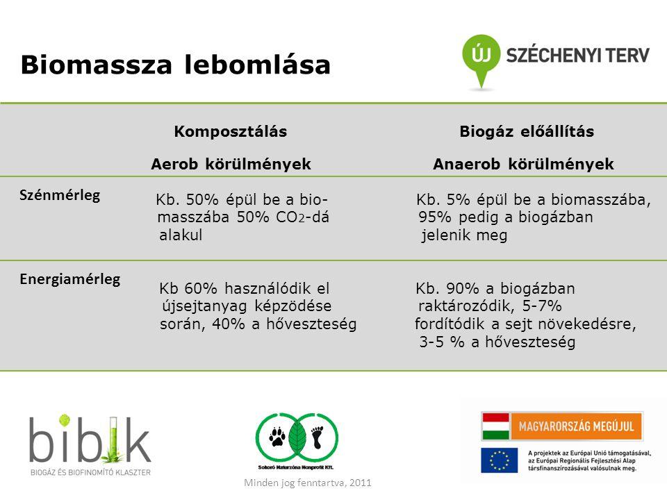 Biomassza lebomlása Komposztálás Biogáz előállítás Aerob körülmények Anaerob körülmények Kb. 50% épül be a bio- Kb. 5% épül be a biomasszába, masszába