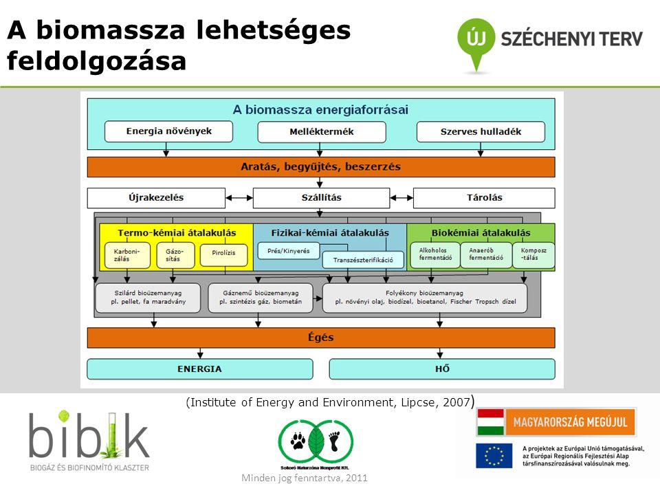 A biomassza lehetséges feldolgozása (Institute of Energy and Environment, Lipcse, 2007 ) Minden jog fenntartva, 2011