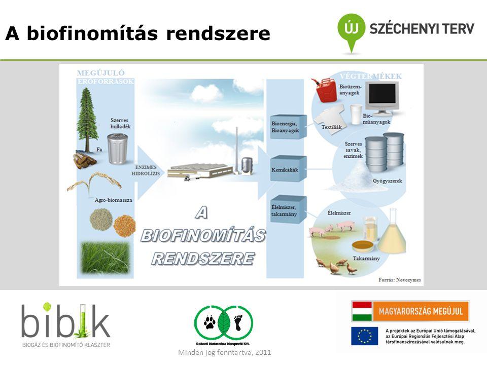 A biofinomítás rendszere Minden jog fenntartva, 2011