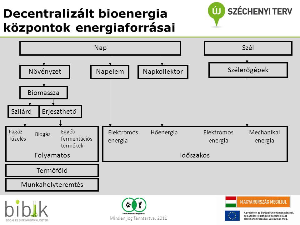 Decentralizált bioenergia központok energiaforrásai NapSzél Szélerőgépek Elektromos energia Mechanikai energia NövényzetNapelemNapkollektor Biomassza