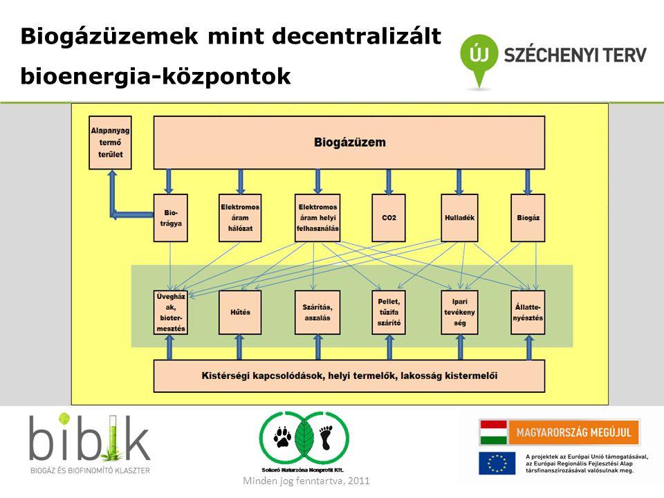 Biogázüzemek mint decentralizált bioenergia-központok Minden jog fenntartva, 2011