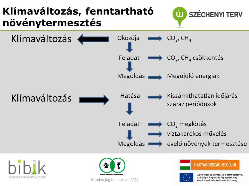 Klímaváltozás, fenntartható növénytermesztés OkozójaCO 2, CH 4 Feladat CO 2, CH 4 csökkentés MegoldásMegújuló energiák HatásaKiszámíthatatlan időjárás