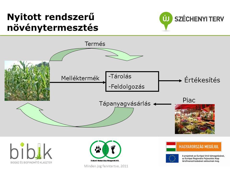 Nyitott rendszerű növénytermesztés Melléktermék -Tárolás -Feldolgozás Értékesítés Tápanyagvásárlás Piac Termés Minden jog fenntartva, 2011