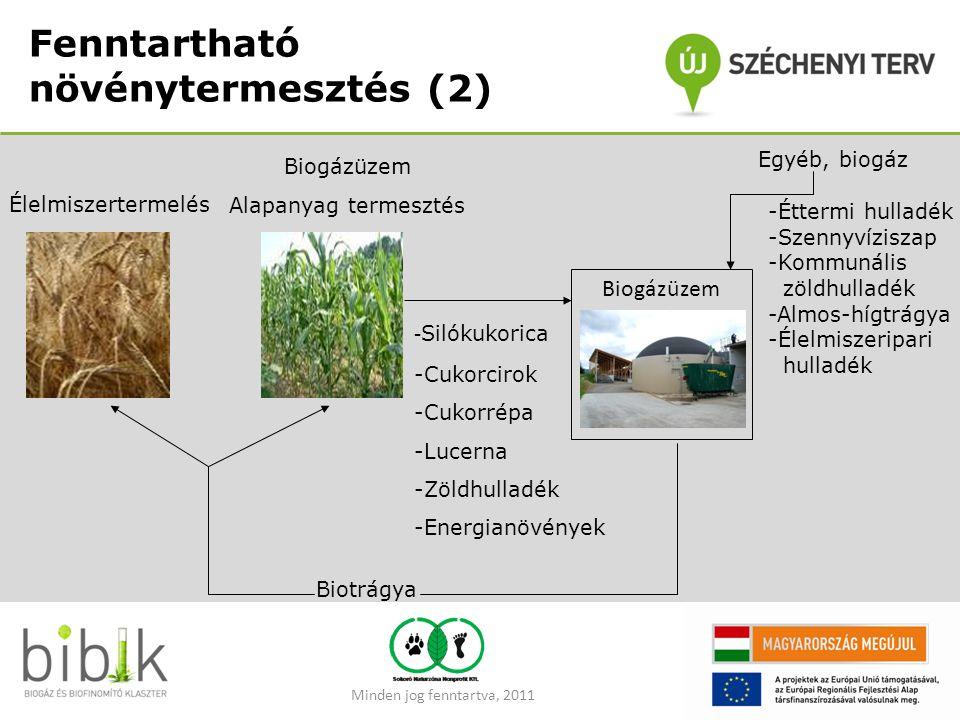 Fenntartható növénytermesztés (2) Biogázüzem Alapanyag termesztés Biogázüzem - Silókukorica -Cukorcirok -Cukorrépa -Lucerna -Zöldhulladék -Energianövé