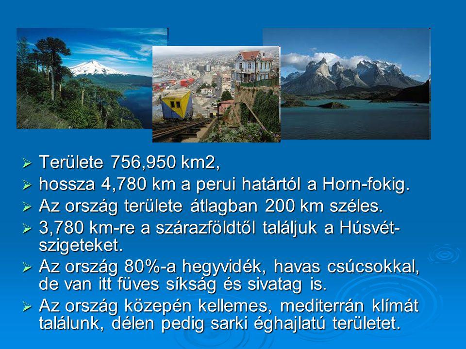  Területe 756,950 km2,  hossza 4,780 km a perui határtól a Horn-fokig.