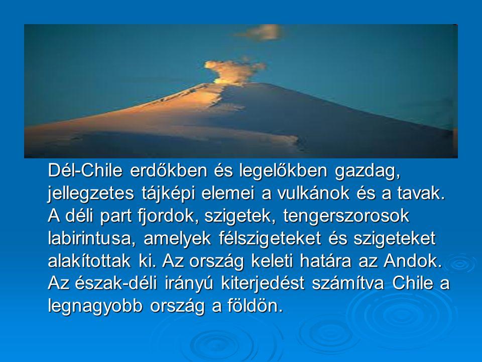 Népesség Chile lakosainak nagy része mesztic, vagyis spanyol-indián származású.