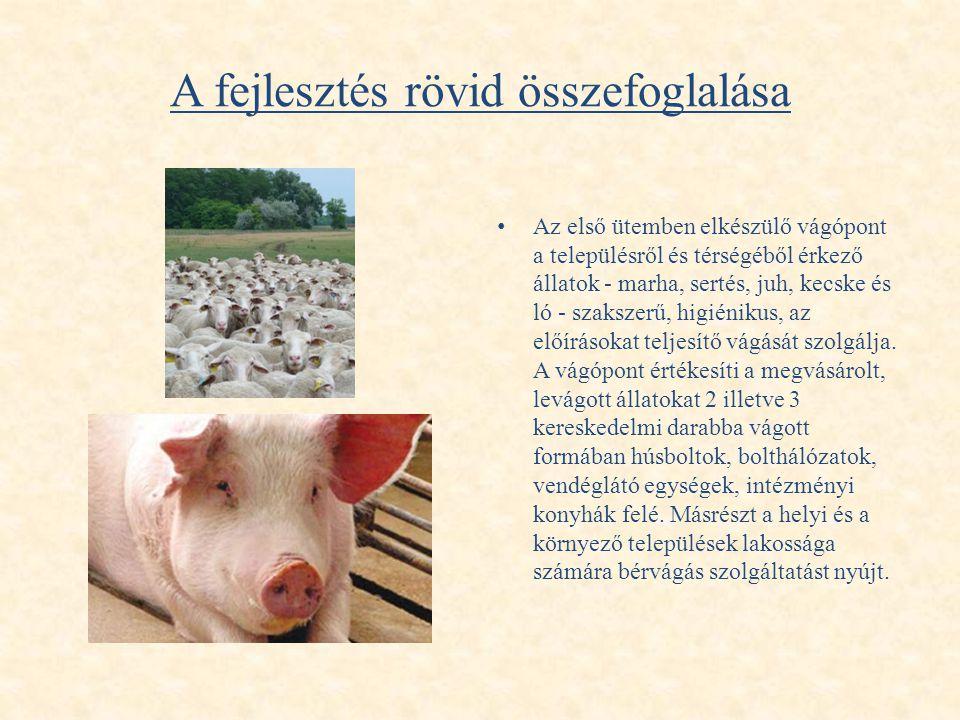 A fejlesztés rövid összefoglalása • Az első ütemben elkészülő vágópont a településről és térségéből érkező állatok - marha, sertés, juh, kecske és ló