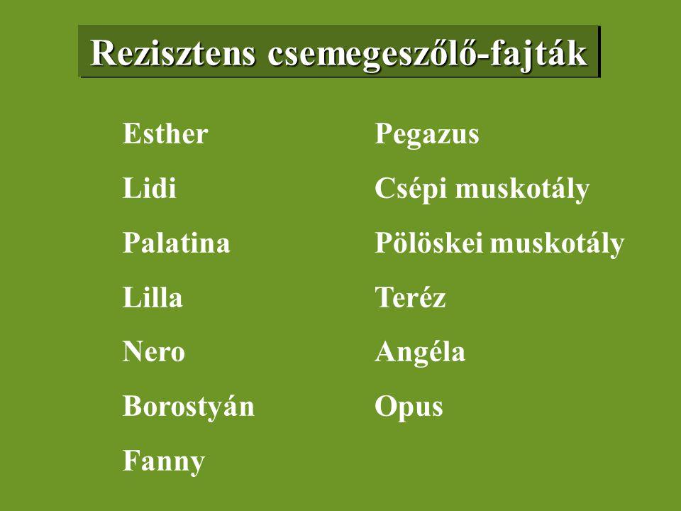Rezisztens csemegeszőlő-fajták Esther Lidi Palatina Lilla Nero Borostyán Fanny Pegazus Csépi muskotály Pölöskei muskotály Teréz Angéla Opus