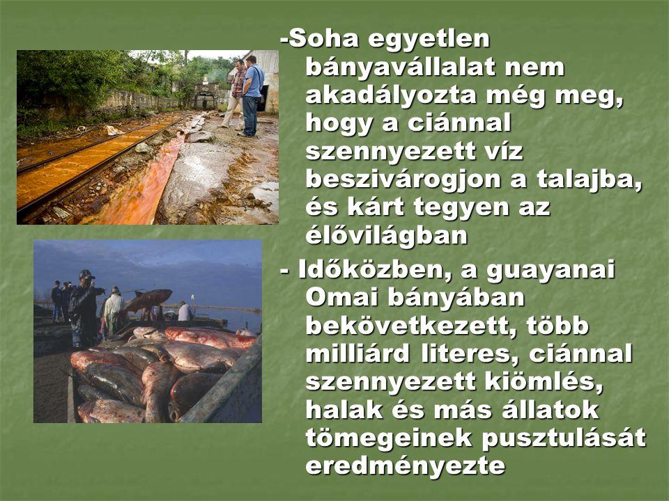 -Soha egyetlen bányavállalat nem akadályozta még meg, hogy a ciánnal szennyezett víz beszivárogjon a talajba, és kárt tegyen az élővilágban - Időközbe