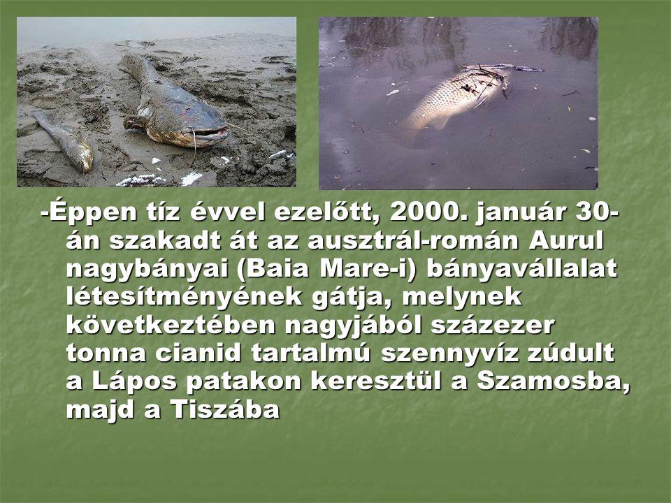 -Éppen tíz évvel ezelőtt, 2000. január 30- án szakadt át az ausztrál-román Aurul nagybányai (Baia Mare-i) bányavállalat létesítményének gátja, melynek