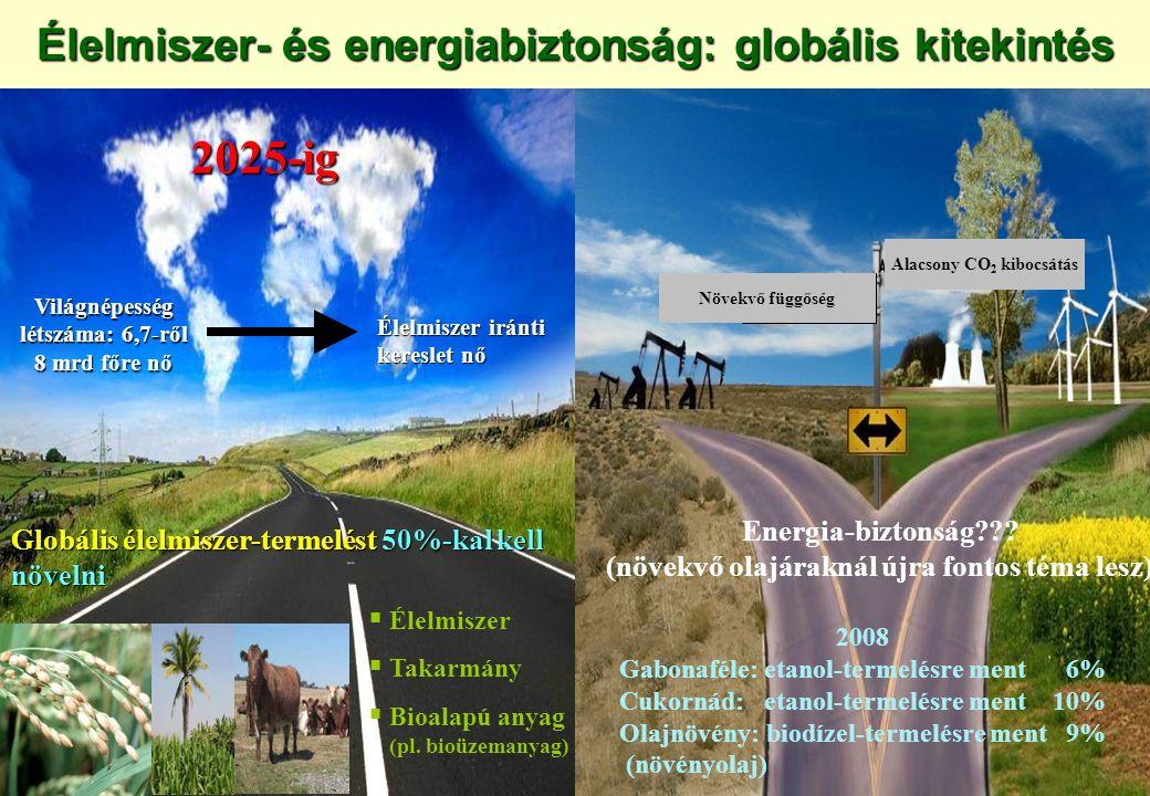 Forrás: UNEP/GRID-ARENDAL Országok, amelyek élelmezés-biztonsági okokból más országokban bérelnek/vásárolnak földeket Országok, amelyek termőföldet bérelnek/vásárolnak Ezer hektár Egy-egy négyzet 50 ezer hektárnak felel meg, ahol ennél kisebb a külföldiek által bérelt/vásárolt terület, ott egy négyzet szerepel.