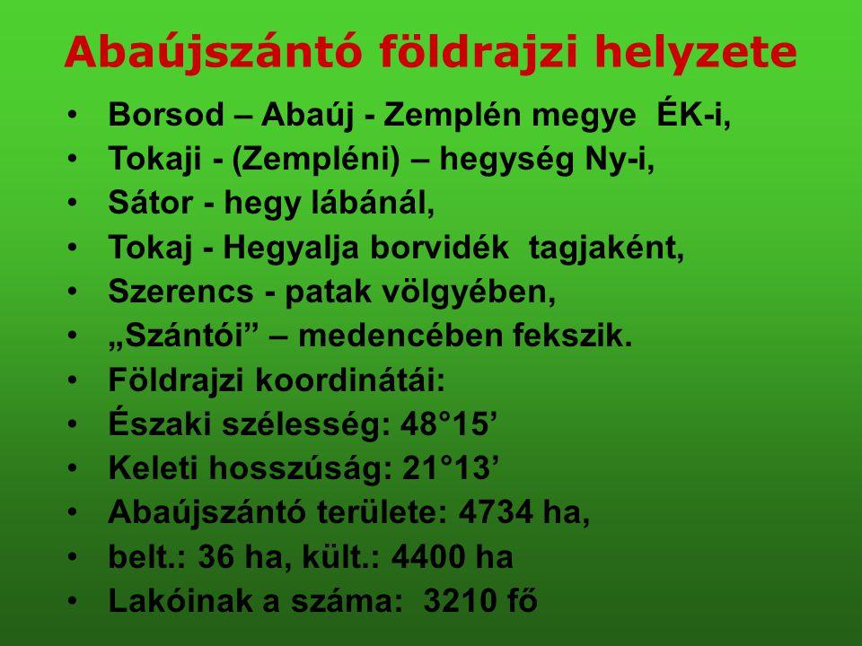 Abaújszántó földrajzi helyzete •Borsod – Abaúj - Zemplén megye ÉK-i, •Tokaji - (Zempléni) – hegység Ny-i, •Sátor - hegy lábánál, •Tokaj - Hegyalja bor