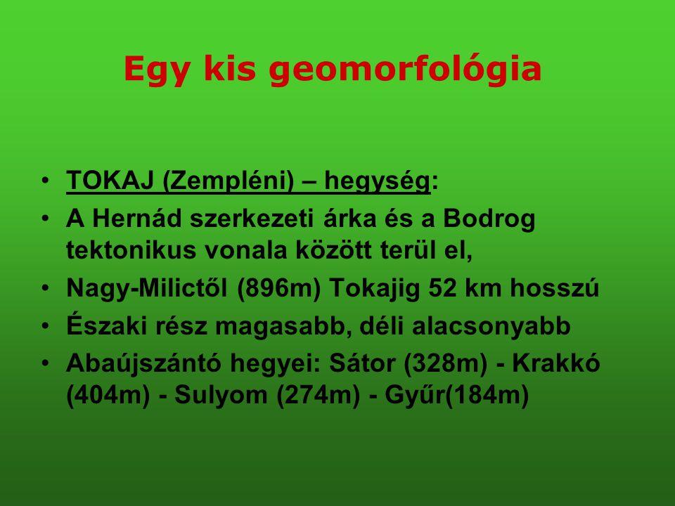 •TOKAJ (Zempléni) – hegység: •A Hernád szerkezeti árka és a Bodrog tektonikus vonala között terül el, •Nagy-Milictől (896m) Tokajig 52 km hosszú •Észa