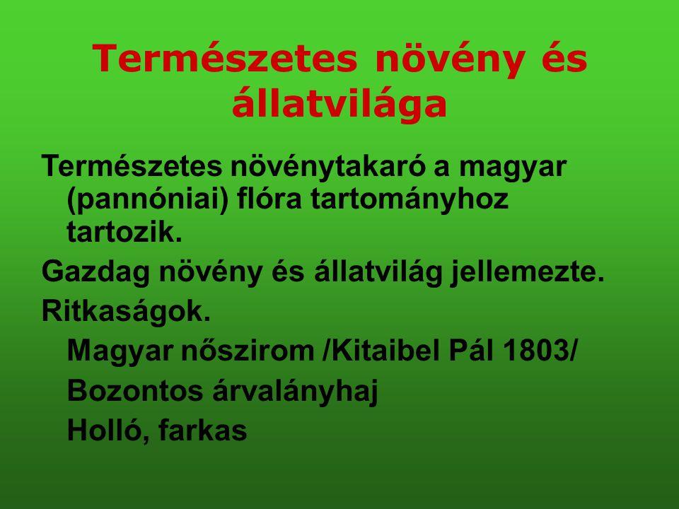 Természetes növény és állatvilága Természetes növénytakaró a magyar (pannóniai) flóra tartományhoz tartozik. Gazdag növény és állatvilág jellemezte. R