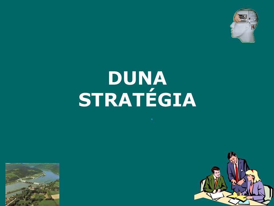 A DS magyar álláspont - célok