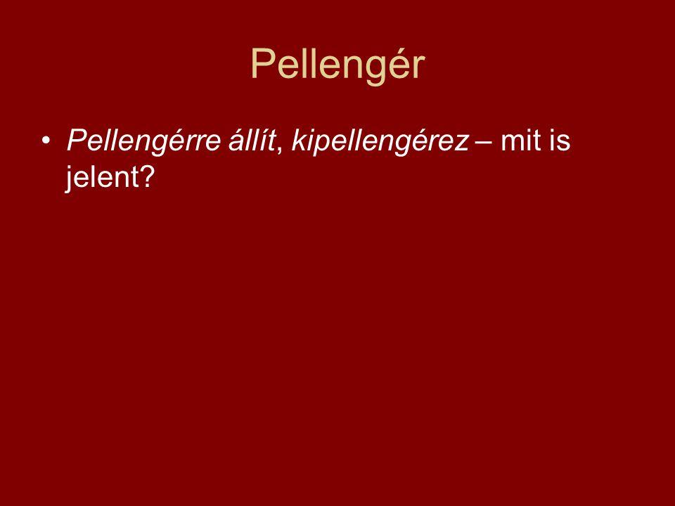 Pellengér •Pellengérre állít, kipellengérez – mit is jelent?