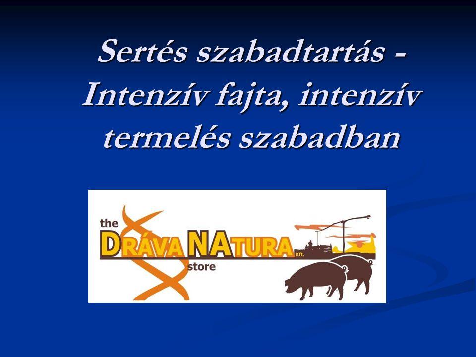 Dráva Natura Kft.bemutatása  A Dráva Natura Kft.