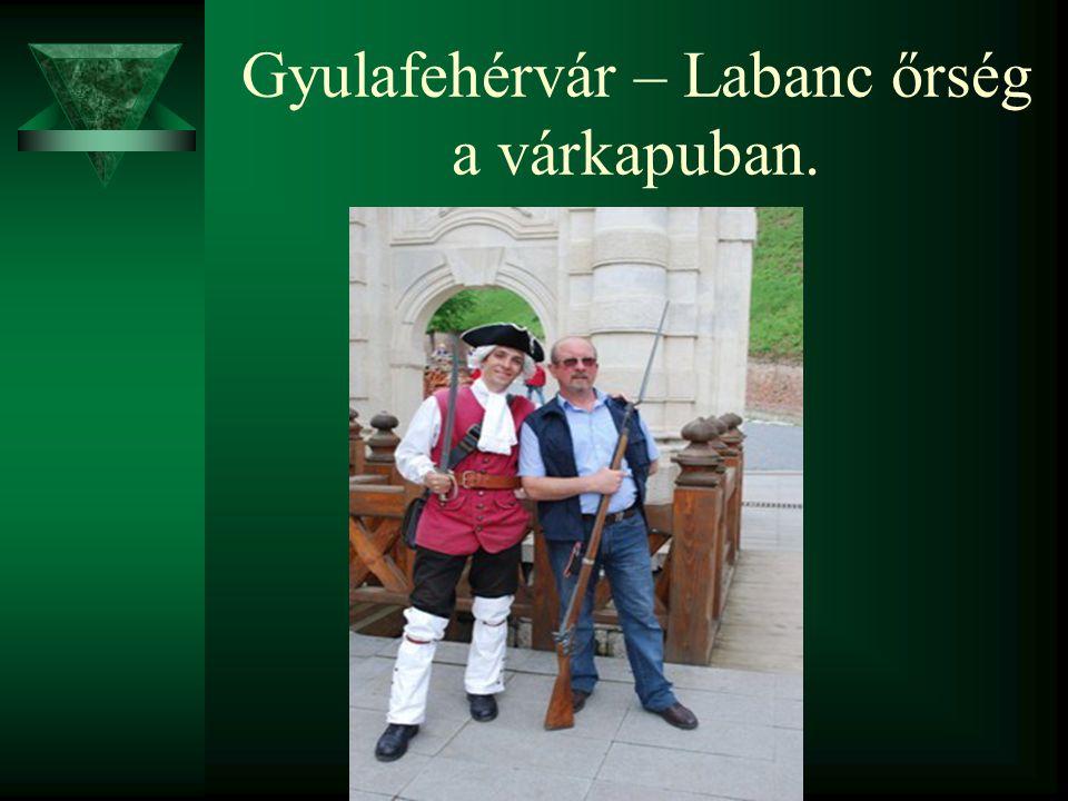 Gyulafehérvár – Labanc őrség a várkapuban.