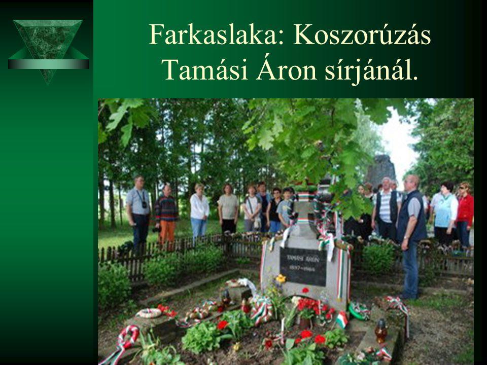 Farkaslaka: Koszorúzás Tamási Áron sírjánál.