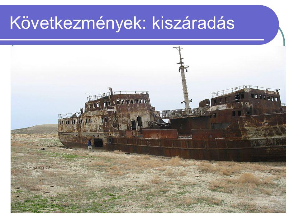 Következmények: kiszáradás  1960-ban még a Föld negyedik legnagyobb tava.  2004-re az Aral-tó elveszítette korábbi területének 75, vízmennyiségének