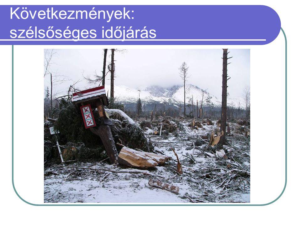 Következmények: szélsőséges időjárás  Magas-Tátra katasztrófa (2004.11.19.):  170 km/órás bukószél  4 millió köbméter kidőlt fa  Várhatóan 50-70 é