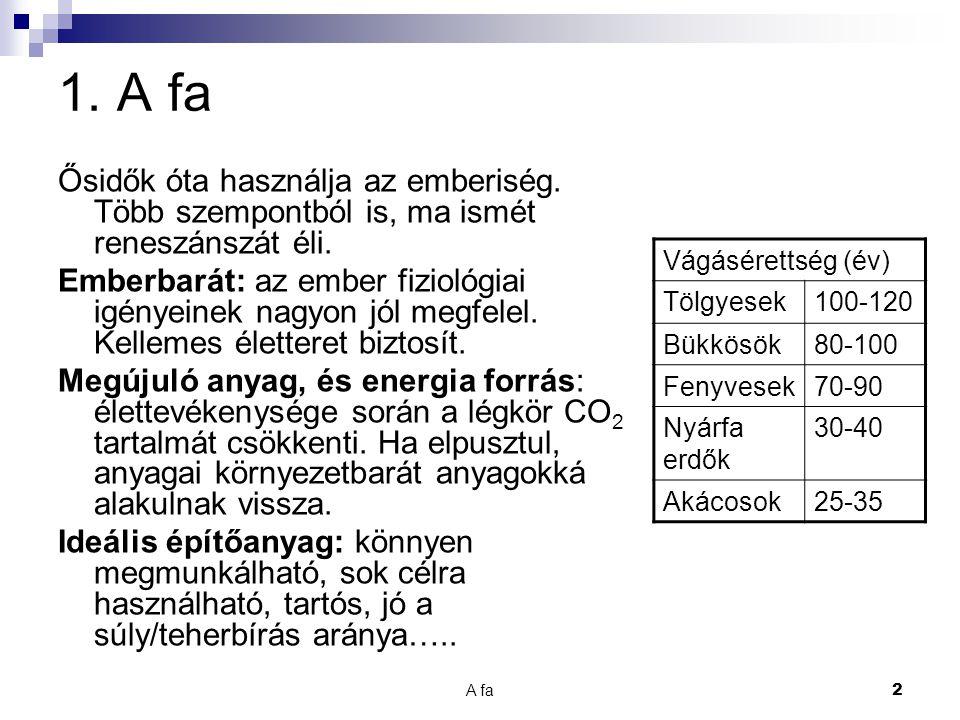 A fa 13 11.Kérdések A 1. Mi a fotoszintézis. Miért fontos az emberiségnek.