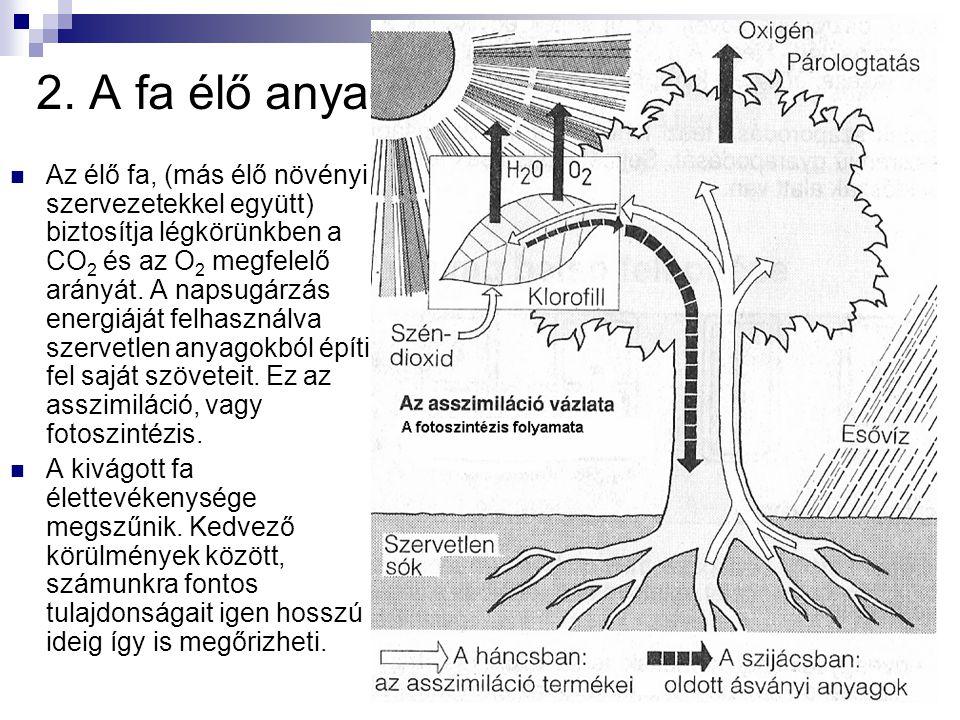 A fa 14 12.A fa tulajdonságai:  Sűrűsége: 1550 kg/m 3.