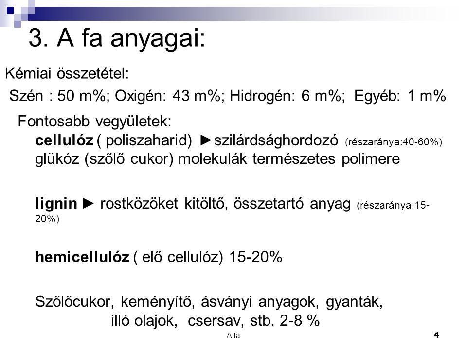 A fa 25 23.Növényi kártevők: Gombák. Lebontó szervezetek.