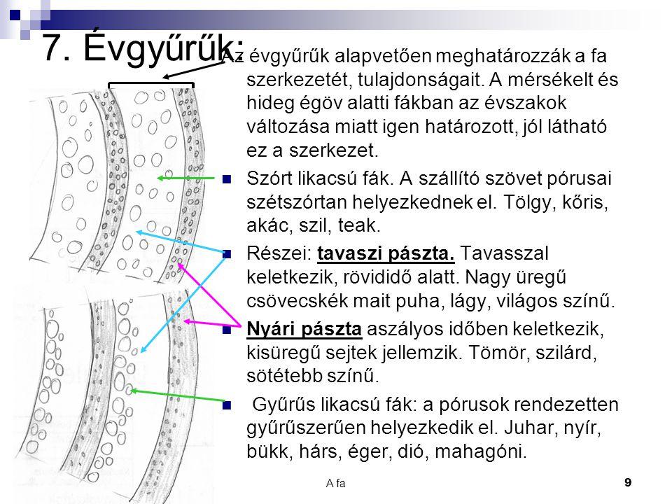 A fa 10 8.A fa élő szövet:  A fa testét sejtek építik fel.