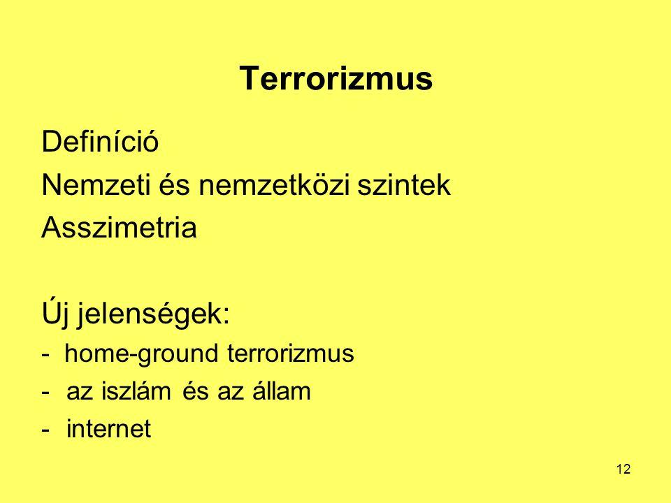 Terrorizmus Definíció Nemzeti és nemzetközi szintek Asszimetria Új jelenségek: - home-ground terrorizmus -az iszlám és az állam -internet 12