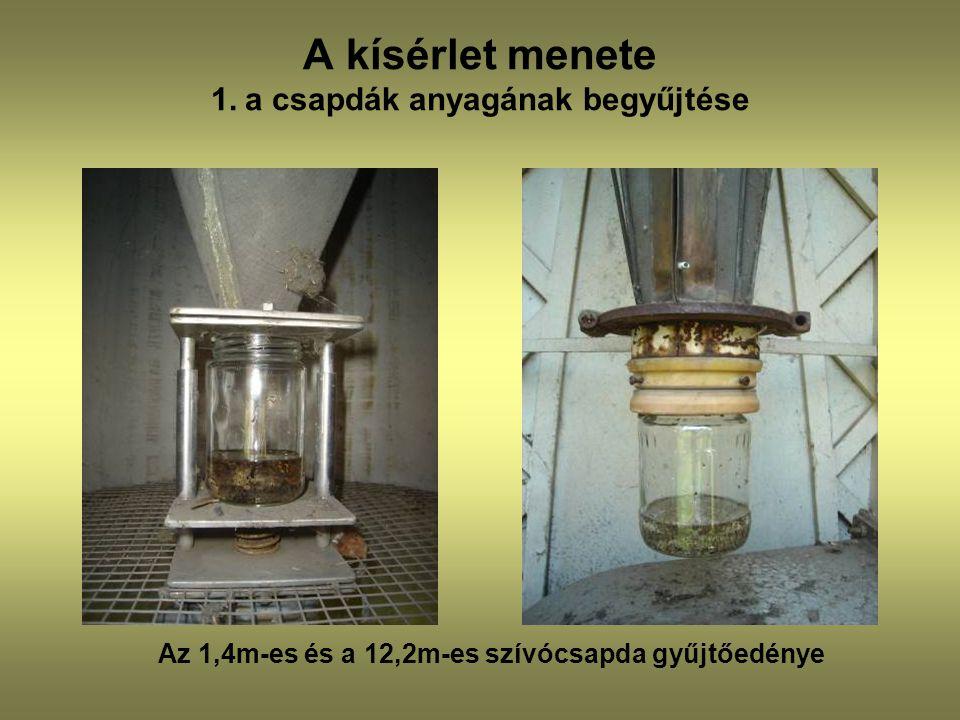 A kísérlet menete 1. a csapdák anyagának begyűjtése Az 1,4m-es és a 12,2m-es szívócsapda gyűjtőedénye