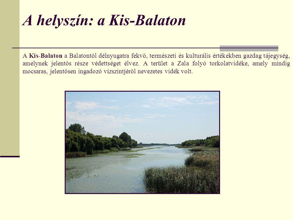 A Kis-Balaton a Balatontól délnyugatra fekvő, természeti és kulturális értékekben gazdag tájegység, amelynek jelentős része védettséget élvez.