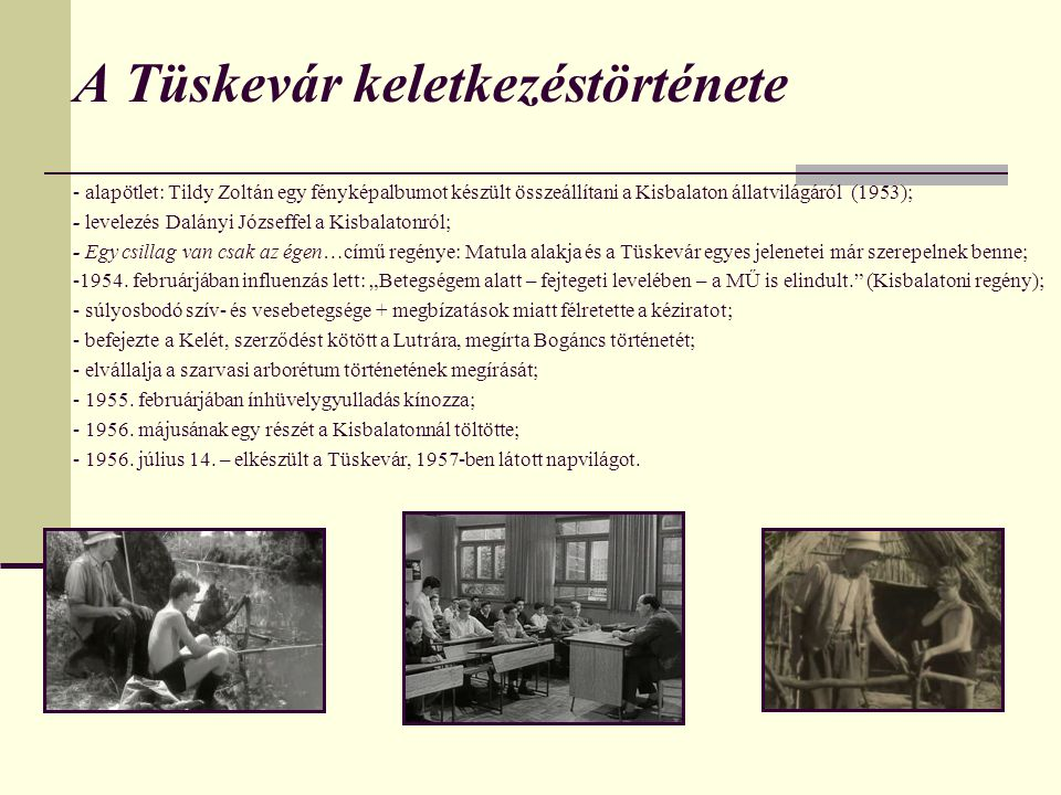 A Tüskevár keletkezéstörténete - alapötlet: Tildy Zoltán egy fényképalbumot készült összeállítani a Kisbalaton állatvilágáról (1953); - levelezés Dalányi Józseffel a Kisbalatonról; - Egy csillag van csak az égen…című regénye: Matula alakja és a Tüskevár egyes jelenetei már szerepelnek benne; -1954.